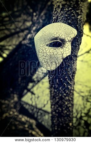 Vintage Venetian Mask on Old Tree by a Pond