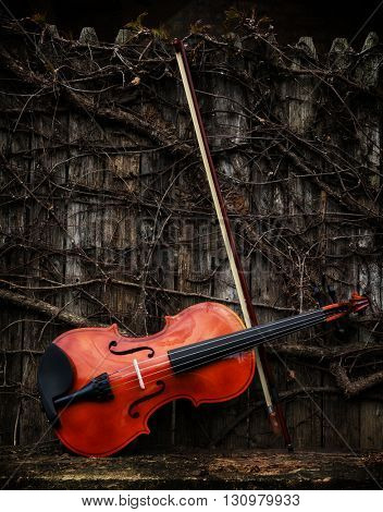 Violin on Wooden Shelf with Bow