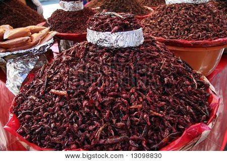 most popular snack in mexico dried grasshoppers poster