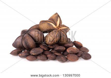 Sacha Inchi Peanut Seed Isolate On White Background