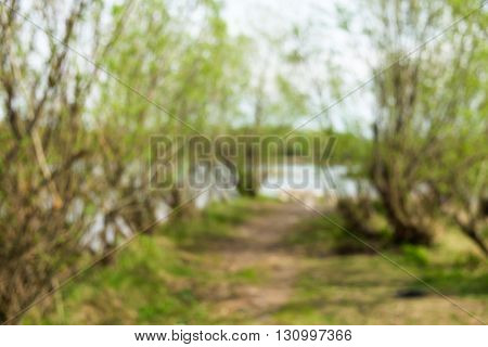 Abstract blurred with the rural footpath between the trees with the river in the background. The spring
