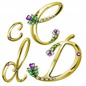 Vector volume shiny gold alphabet with floral details from diamonds and gems, letters C, D poster