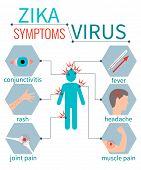 Zika virus symptom icons - fever, headache, muscle pain, joint pain, red eyes, rash. Zika virus infographic elements. Zika virus disease. Zika virus design template. Isolated vector illustration. poster