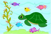 Here is a friendly group of marine animals. poster