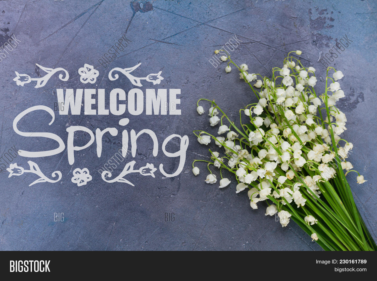 Lilly valley flowers image photo free trial bigstock lilly of the valley flowers on gray background with welcome spring slogan mightylinksfo