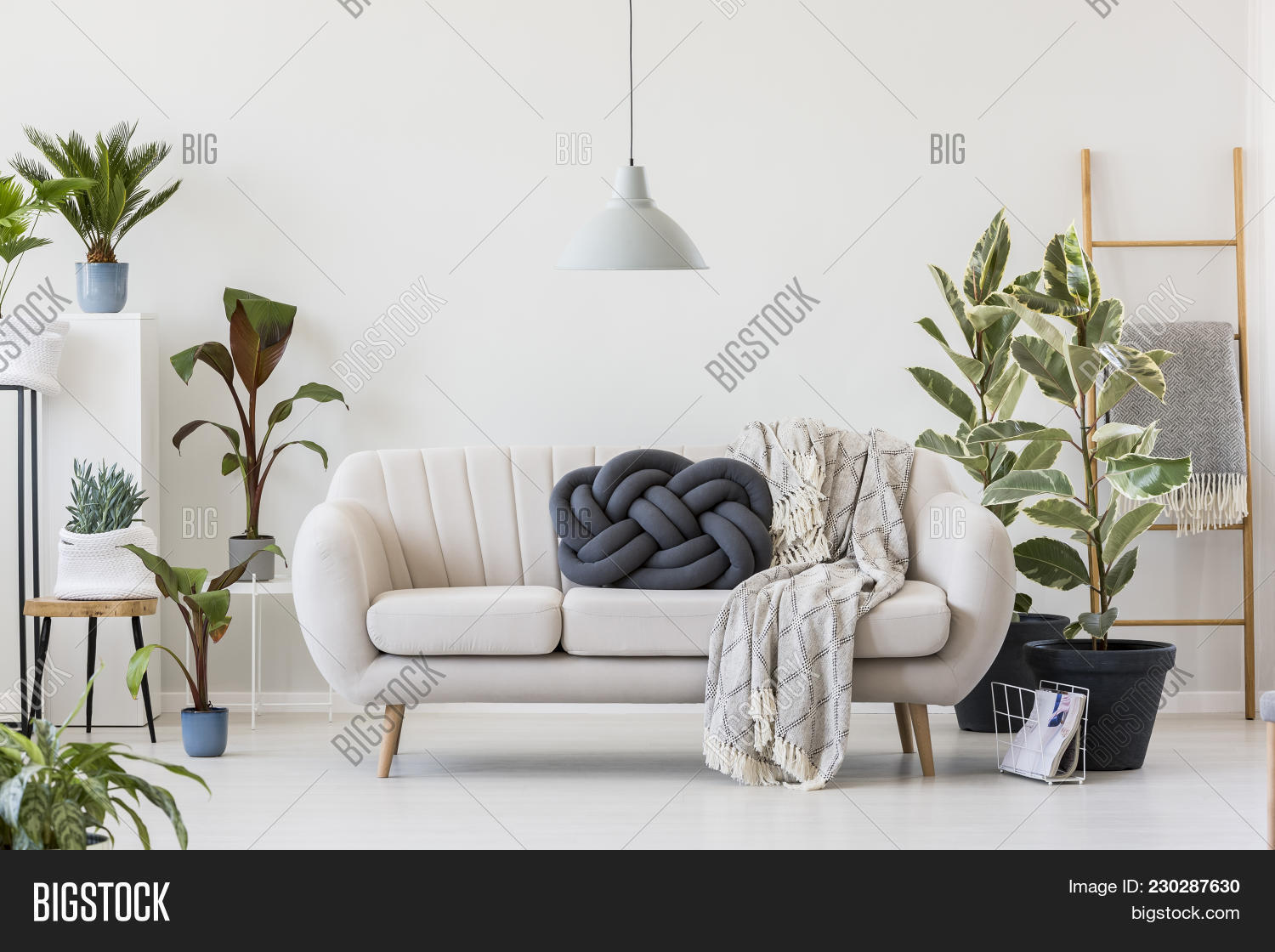 Knot Pillow On White Image Photo Free Trial Bigstock