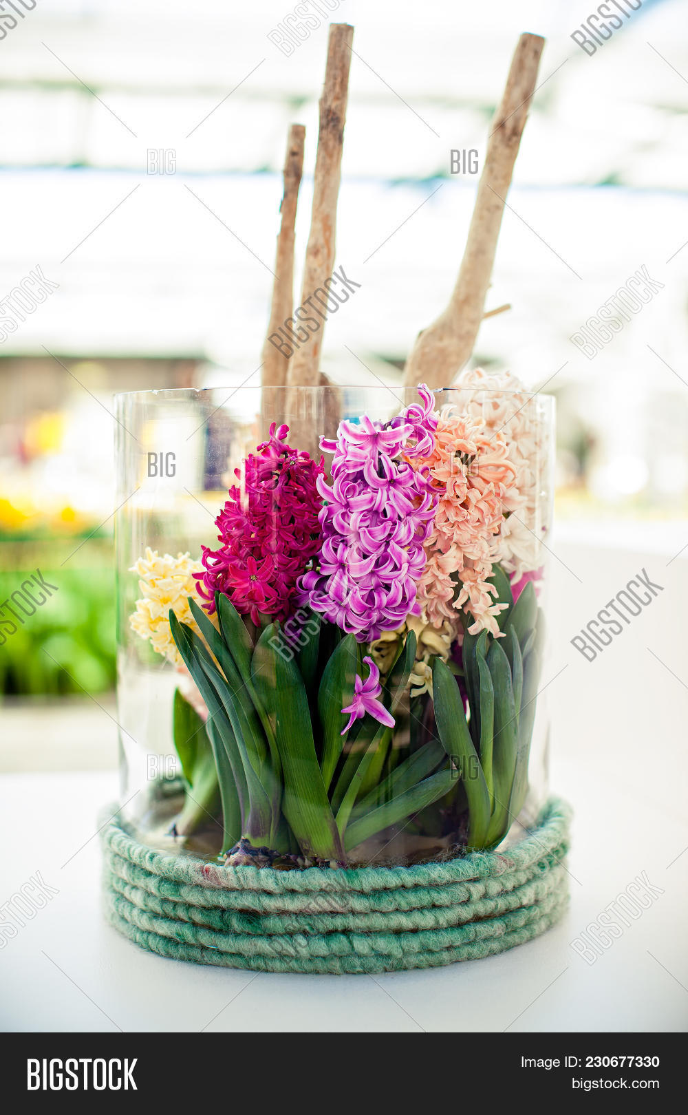 Gorgeous Table Image Photo Free Trial Bigstock