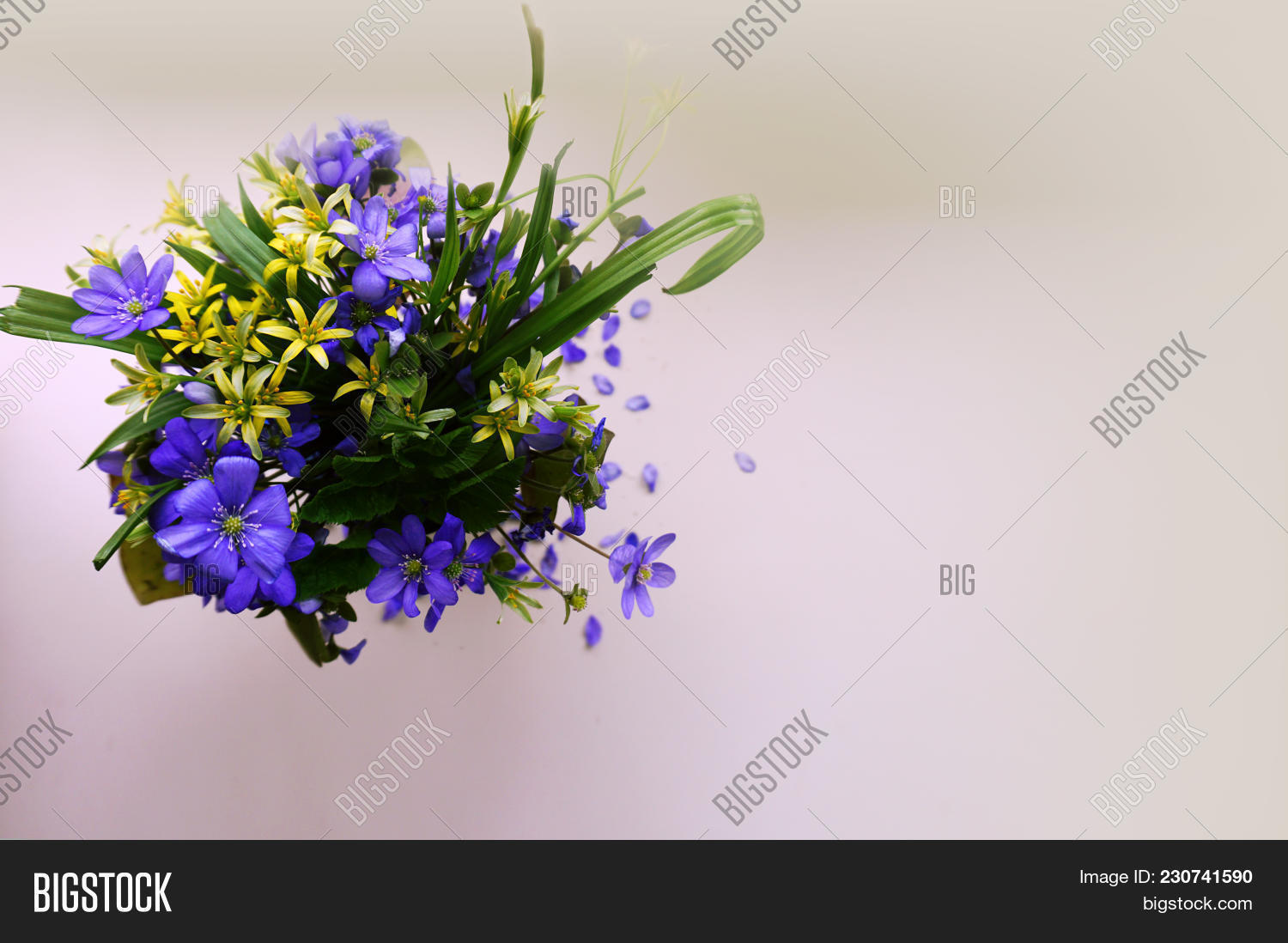 1 Small Neat Bouquet Image Photo Free Trial Bigstock