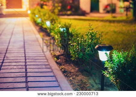 Decorative Small Solar Garden Light, Lanterns In Flower Bed In Green Foliage. Garden Design. Solar P