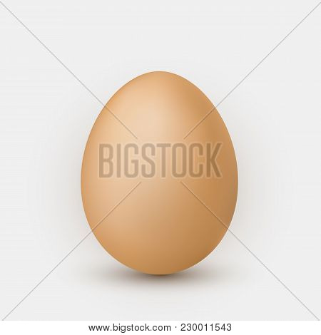Realistic Brown Egg With Shadow On White Background.