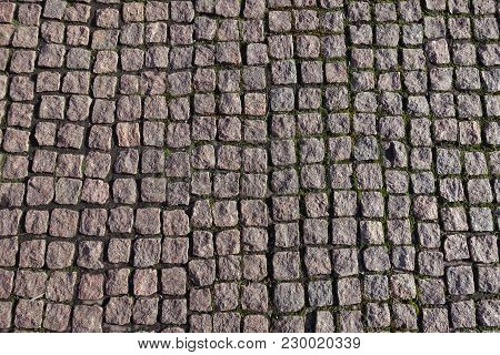 Small Stone Setts With Moss In Joints