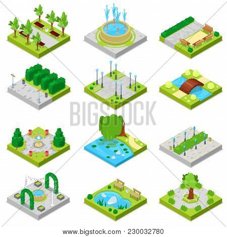 Park Vector Landscape Of Parkland With Green Garden Trees And Fountain Or Pond In City Illustration
