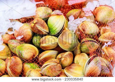Mussels Background - Fresh Seafood At Market Fresh Mussels On Fish Farmer Market Ready For Sale And