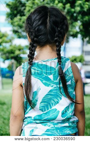Braids Of A Girl In The Park