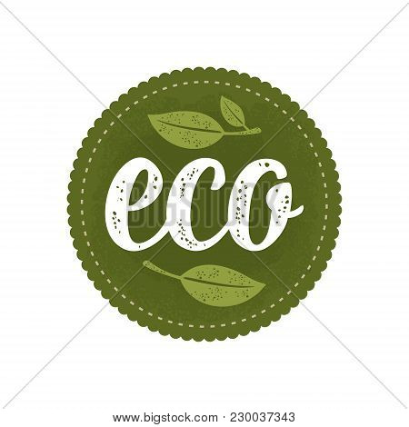 Eco Calligraphic Handwriting Lettering And Leaf. Vector White Vintage Illustration Isolated On Dark
