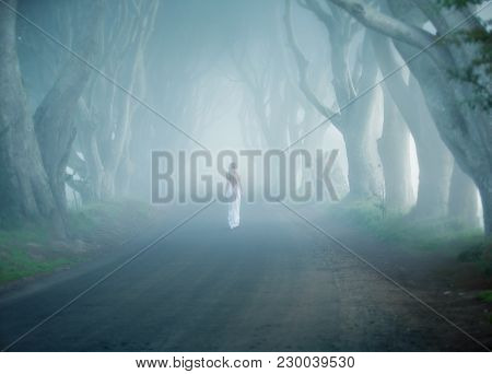 Dark Hedges, Ireland, Fogy Tree Lined Road, Woman Walk Away In White Long Dress
