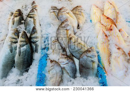 Offering Of Fresh Fish Chilled With Crushed Ice At A Fishery, Fish Market Or Supermarket On Display