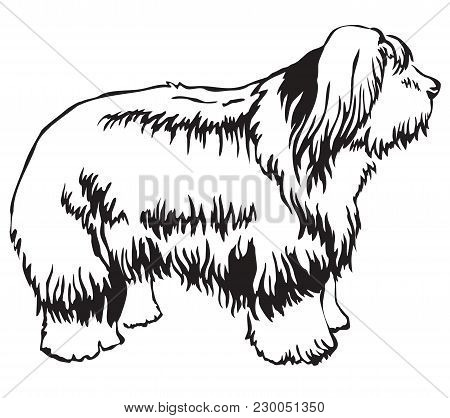 Decorative Portrait Of Standing In Profile Dog Old English Sheepdog, Vector Isolated Illustration In