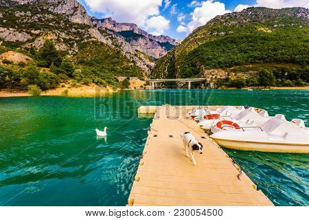 Large dog walks along the pier. Boat mooring on the Verdon River. White catamarans are moored in azure water. The picturesque Verdon Gorge. Concept of ecological and active tourism