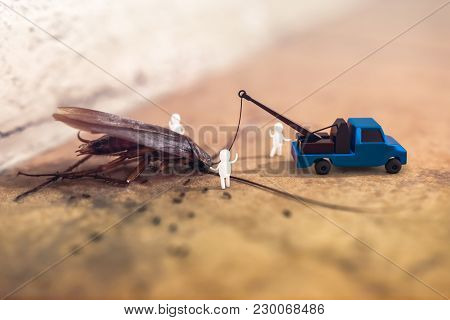 3d Rendering Composite With A Photograph Of A Dead Cockroach Lying On A Floor With The 3d Characters