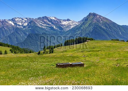 View of green alpine meadow and mountain ridge on background in summer in Piedmont, Northern Italy.