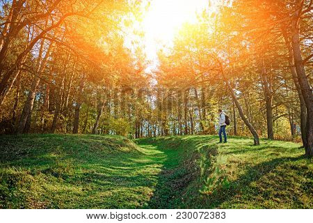 Landscape With Autumn Forest Upon Green Grassland Hills. View On The Man Hiker From Afar.