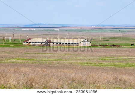 Typical Steppe Landscape With An Old Farm. The Endless Don Steppe.