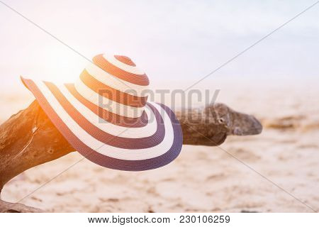 Straw Hat On Branch At The Beach,relaxing And Holiday Concept.
