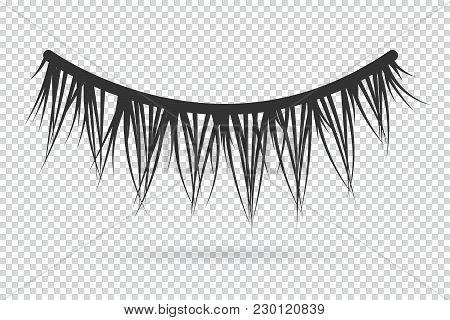 Feminine Lashes Vector. False Eyelashes Hand Drawn.