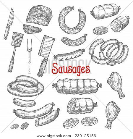Meat And Sausages Delicatessen Sketch Icons. Vector Isolated Pepperoni, Cervelat Or Salami Sausage B