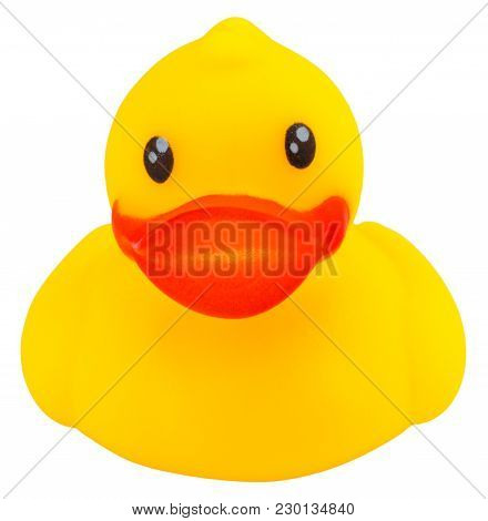 Yellow Rubber Duck Isolated On White Background.