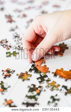 Hand Of A Woman Playing Jigsaw Puzzle, Starting To Match The Pieces To Unveil The Image. Pieces On A