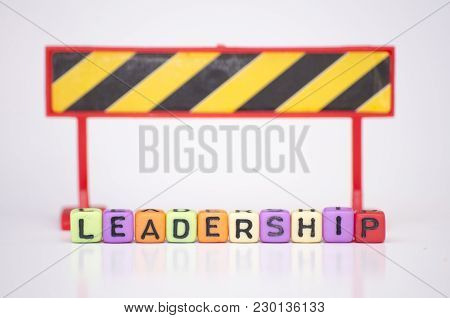 Business Success And Motivational Concept Dices Cube With Word Leadership With Reflection.selective
