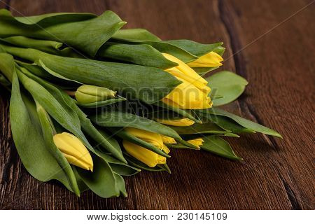Spring Tulips Flower On A Wooden Background Close Up