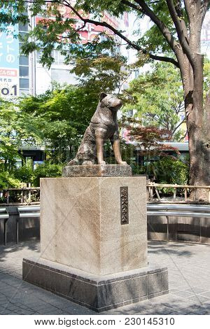 Tokyo, Japan - April 29, 2017 : Hachiko Dog Statue In Front Of Shibuya Station, Tokyo. This Is The L