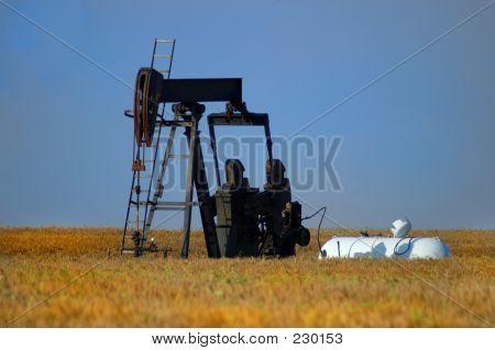 Landwirtschaft Weizen Öl