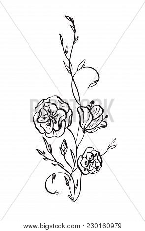 Hand Drawn Wild Rose Flowers Vector Drawing And Sketch With Line-art On White Backgrounds.