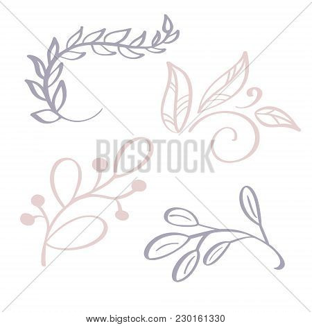 Hand Drawn Wild Flowers Branch Vector Drawing And Sketch With Line-art On White Backgrounds, For Bot