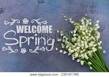 Lilly Of The Valley Flowers On Gray Background With Welcome Spring Slogan