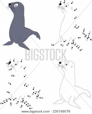 Cartoon Fur Seal For Babies. Coloring Book And Dot To Dot Game For Kids