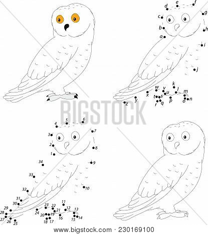 Cartoon Polar Owl For Babies. Coloring Book And Dot To Dot Game For Kids