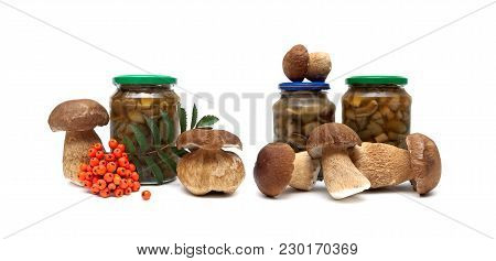 Mushrooms And A Bunch Of Red Rowan On A White Background. Horizontal Photo.