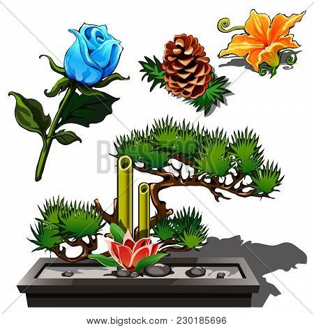 Interior Composition From Flowers And Plants. Vector.