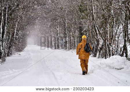 Bannow County Wexford Ireland In March 2 2018; Man Walking On Winter Road Covered In Snow.