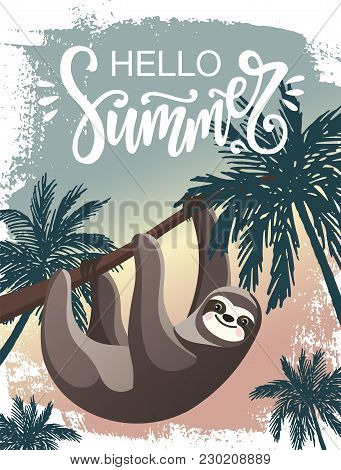 Hello Summer Vector Poster With A Cartoon Lazy Hanging Sloth And Palm Trees. Hand Drawn Paint Backgr