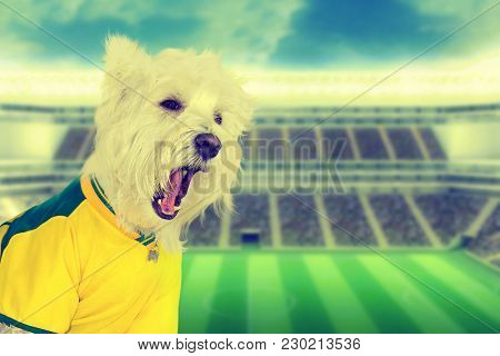 Brazilian west highland white terrier fan screaming at stadium - retro style