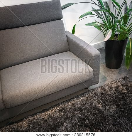 Detail Of A Living Room With Gray Sofa, Green Plant, And Fluffy Rug.