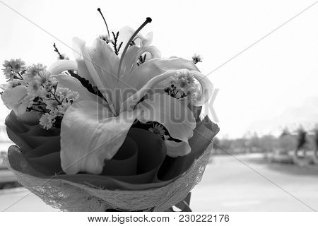 Beautiful White Lily Bouquet In Black And White Background.
