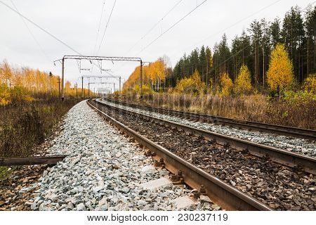 Railway Road And Trees In Yellow Colors In An Autumn Day