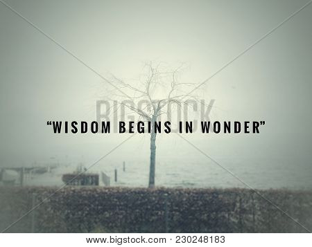 Motivational And Inspirational Quotes - Wisdom Begins In Wonder. With Blurred Vintage Styled Backgro